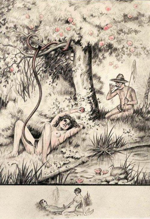 Le harem de marie sophie - 1 9