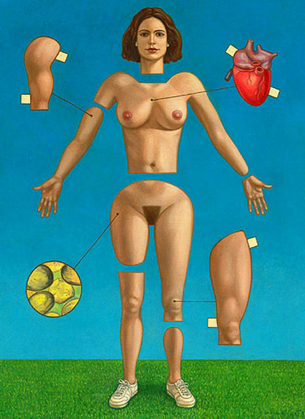 Woman's Physiology